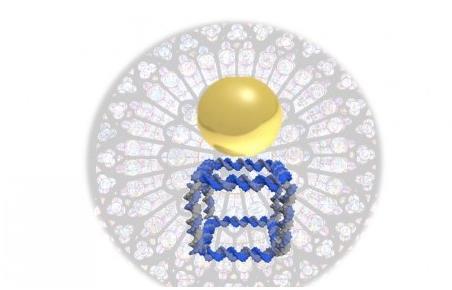 研究团队发布新型数字生物转换器可进行DNA生物打印